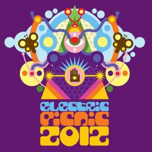 Electricitat (Leictreachas) Electric Picnic 2012 Special 23-08-2012