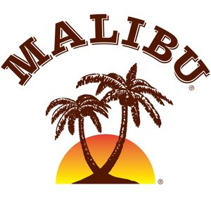 Party at Club MaLiBu