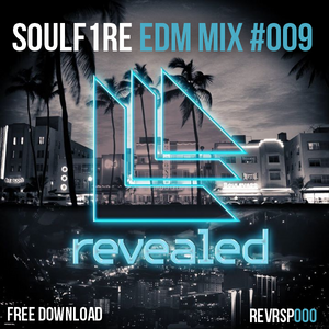 SOULF1RE - EDM Mix #009 [Free DL]