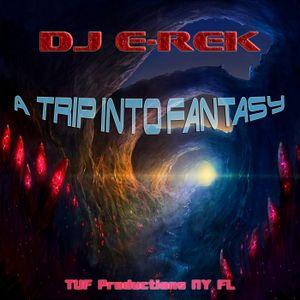 DJ E-Rek - A Trip Into Fantasy