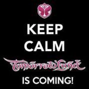 Jason Parker Festival DJ Set 2013 Tomorrowland