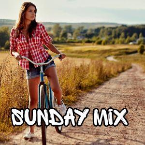 Sunday Mix #102 [2016] by Raptor