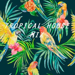 Tropical House Mix (Part I)