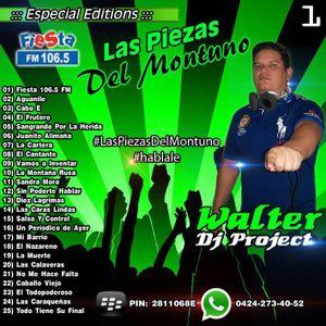 Piezas Del Montuno - WALTER DJ PROJECT
