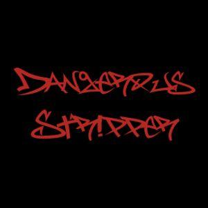 130517 Dangerous Stripper DJ MIX VISION