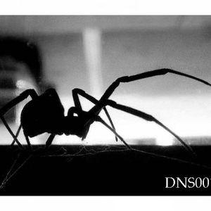 Dion-Black Widows