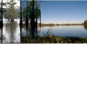 Louisiology 6 - Baton Rouge Lakes