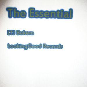 The Essential LTJ Bukem Looking Good Records