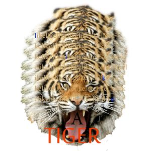 Like a tiger - Kidswanthouse guestmix