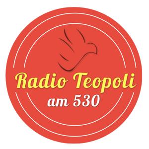Radio Teopoli AM530 Toronto: Canadian Catholic Bioethics Institute - Natural Law 08/09/11