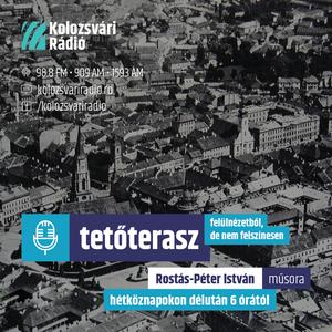 TETŐTERASZ: (Kolozsvári Rádió) – Beszélgetés Dávid Gyula irodalomtörténésszel