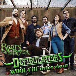 Bug from The Defibulators: WOOL-FM interview
