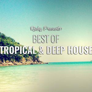 Tropical & Deep House Mix   2016