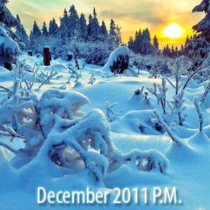 12.2.2011 Tan Horizon Shine P.M.