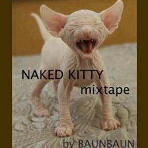 Naked Kitty