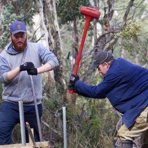 Tasmania's Three Capes Track