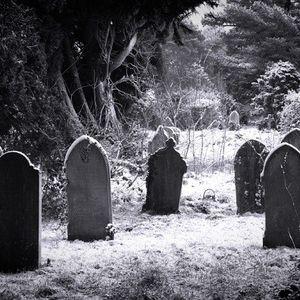 Carpe Morte