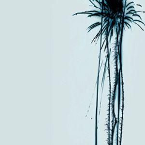 Reversed Light 09/02/11