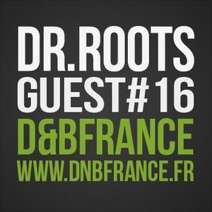 Docta Roots - D&BFrance Guestmix # 16