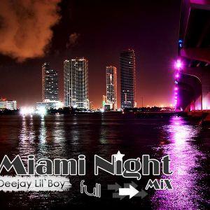 Miami Night - Deejay Lil`Boy Mix 2010.11.17