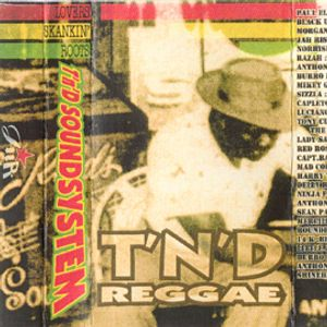 T'n'D Reggae Vol1. Lovers Skankin' Roots Dj Mate Side