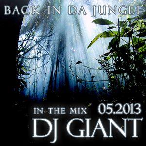 DJ Giant - Back In Da Jungle - Drum and Bass Mix - 05-2013