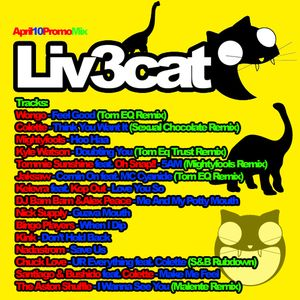 10April2010 Promo Mix