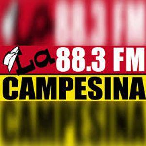 Campesina Mix 5-19-17