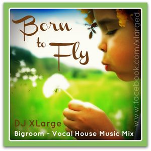 DJ XLarge - Born To Fly (Bigroom Vocal Mix 30mins)