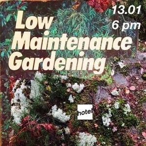 Low maintenance gardening- 13/01/2016