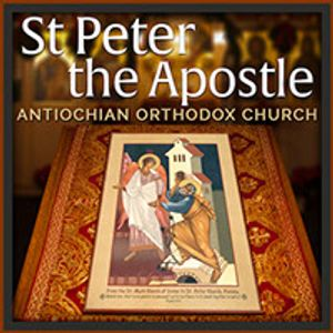Homily for the 2nd Sunday after Pentecost, July 3, 2016