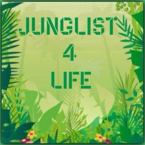 Java - 95 jungle