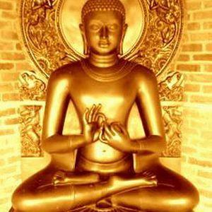Buddha Project - Vol. 01