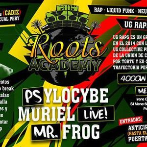 Mr Fr0g - Roots Academy Becool Cadiz Dj Set (06/02/2015)