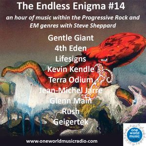 The Endless Enigma #14
