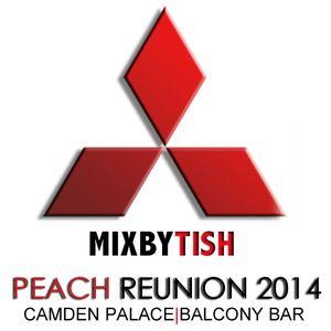 Mixed By Tish Peach Balcony Mini Mix