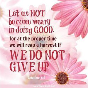Pure Encouragement # 2