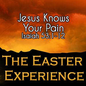 Jesus Knows Your Pain