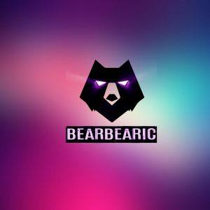 Summer 2017 mix (Hosted by Bearbearic) [House, Bass House, Future House]