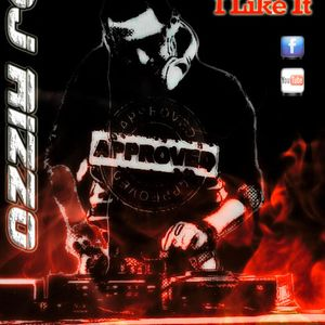 DJ RIZZO aka JO.RDJ - MEGAMIX 2014