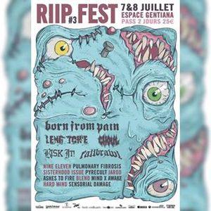 About RIIP Fest #3