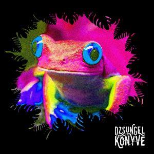 DJ Ren + Mentalien at Dzsungel Konyve 2018.11.27.