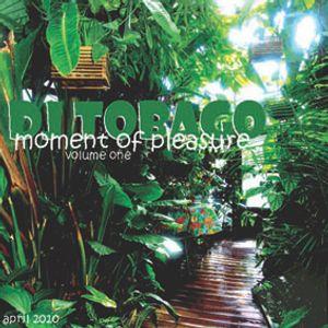 DJ TOBAGO - Moment Of Pleasure Vol 1