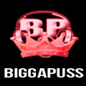 VIBEZURBAN.CO.UK 3-8-2014 DJ BIGGAPUSS REVIVAL SUNDAY PART2