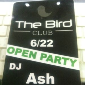 Regression 029 By Ash - the bird open party  Mix