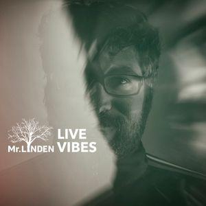 Live Vibes