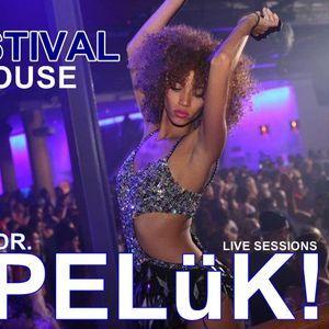 DR. PELüK! present FESTIVAL HOUSE sep. 2012