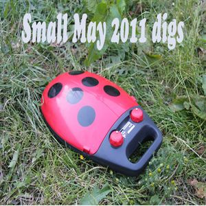 Small may 2011 digs