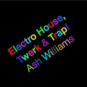 Electro House/Twerk/Trap