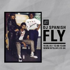 DJ Spanish Fly - 18th June 2015